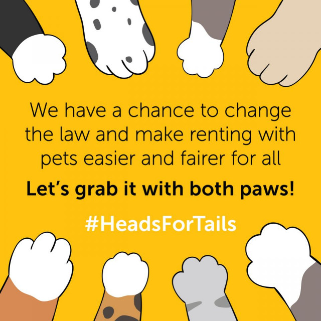 PDPLA Supports Campaign For Tenants With Pets